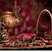 Какао купить в Молдове фото