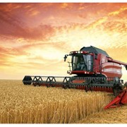 Зерноузерноуборочный комбайн Case IH Axial-Flow 7120,8120 фото