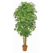 Искусственное дерево Клен Италия (Код товара: 52728) фото