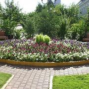 Обслуживание садов и ландшафтов фото