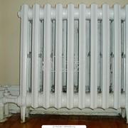 Радиатор отопления РАМ Люкс фото