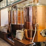 Мини-пивоварня Казахстан фото