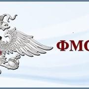 Все услуги ФМС в Казани. фото