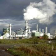 Экологическая бесопасность