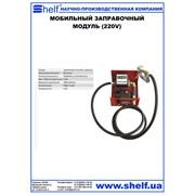 Мобильный заправочный модуль (220v) electronic transfer pump 220v фото
