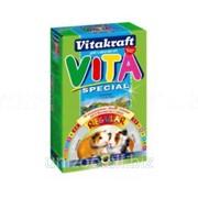Корм для морских свинок Vitakraft Vita Special Regular 600 гр фото