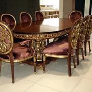 Набор мебели,стол, стул, кресло(JUMBO)(ALCHYMIA, MATISSE) фото