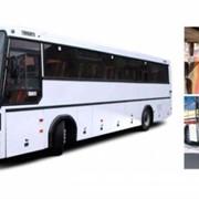Автобусы МАЗ 152 фото