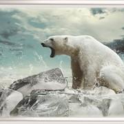 Картина из стекла Животные 28 фото
