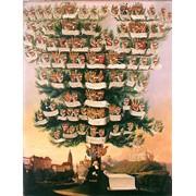 Генеалогические услуги, создание родословного дерева, фото