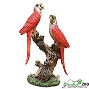 Фигура садовая Попугаи средние фото