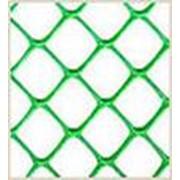 Сетки пластиковые для сада и огорода код L ячейка 50х50 фото