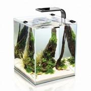 Smart 30 SHRIMP SET AquaEl аквариум настольный, 30 литров, Розничная, Прозрачный с белой каймой фото