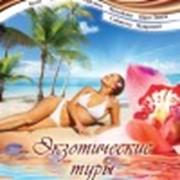 Разработка полиграфии и ведение сайта ТК «Новый Мир»( Днепропетровск-Ялта) фото