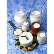 Продукты молочные фото