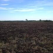 Пашня до 80 тыс. га в Челябинской области фото