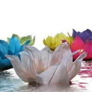 Водный светящийся цветок, Сувениры (Украина, Киев, Ивано-Франковск, Черновцы, Днепродзержинск) фото