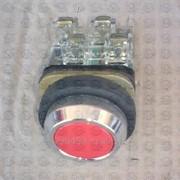 Кнопка ZB2-RA91 фото