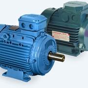 Электродвигатель взрывозащищённый 2В280S8 мощность, кВт 45 750 об/мин фото