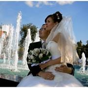Организацию и проведение незабываемой свадьбы фото