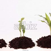 Стимуляторы роста растений купить в Херсонской области. Органо-минеральные удобрения. Минеральные и органические удобрения фото