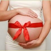 Определение отцовства до рождения ребенка фото