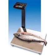 Весы влагозащищенные МК-AВ фото