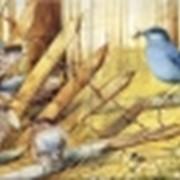 Панно Птички в саду фото