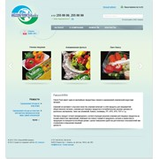 Интернет магазин одноразовых упаковок для компании Falcon/KRM фото
