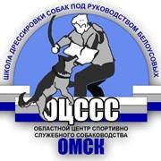 Омский областной центр спортивно-служебного собака фото