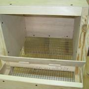 Гнездо для кур с яйцесборником фото