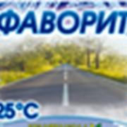 Стеклоомывающая жидкость ФАВОРИТ -25° фотография
