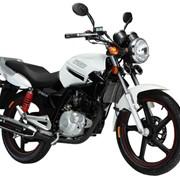 Мотоцикл CFMOTO CF150 фото