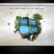 Веб-дизайн, разработка фото
