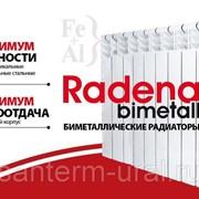 Радиатор биметалл RADENA 350/85/8 секций фото