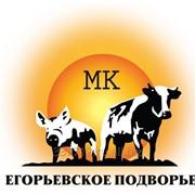 Давальческий убой свиней Москва фото