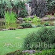 Ландшафтный дизайн Pine House Л03 фото