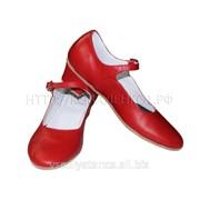 Туфли народные женские обтяжной каблук ТНО-14 фото