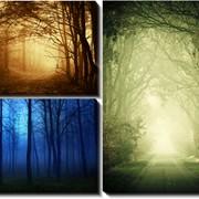 Модульная картина Лес, Неизвестен фото