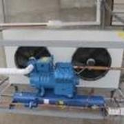 Монтаж холодильного оборудования для овощехранилищ, фруктохранилищ фото