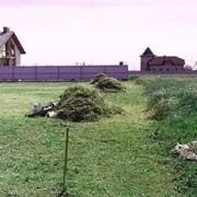 Покос травы, услуги мотокосы в Тюмени фото