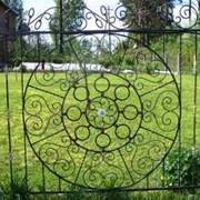 Заборы и ограды фото