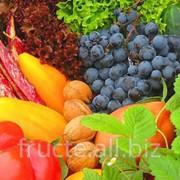 Fructe in Moldova фото
