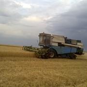 Комбайн зерноуборочный Fortshritt 516 фото
