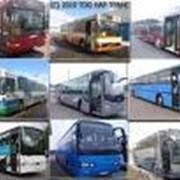 Автобусы городские фото