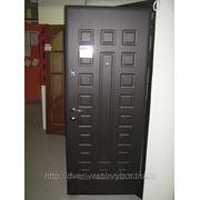 металлические двери де люкс модерн