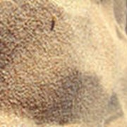 Песок крупный фото