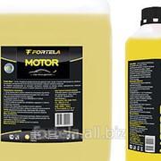 Средство для мойки двигателя FORTELA Motor фото
