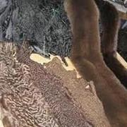 Пальто меховые фото