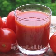 Технические Условия Напитки томатные фото